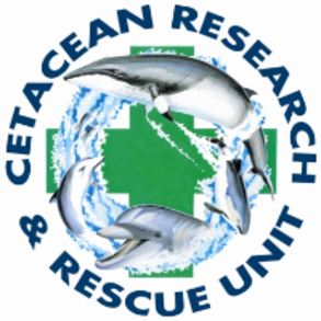 Cetacean Rescue and Research Unit (CRRU)