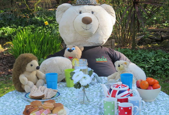 The Big Bear Picnic